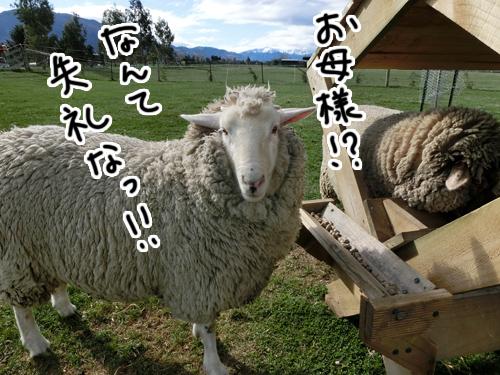 05102015_pic1