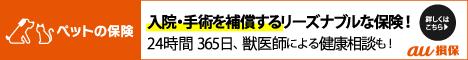 au保険バナー下_468×60